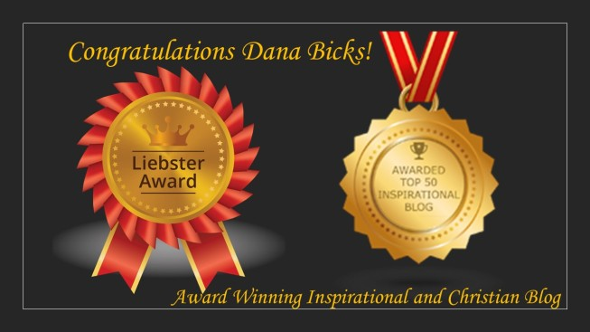 Dana's Awards