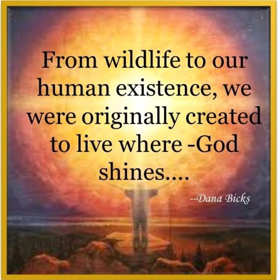 God Shines 3